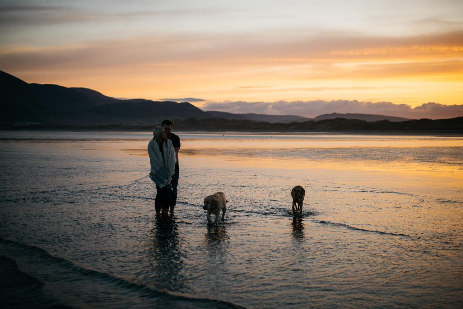 couple with dogs at sunset