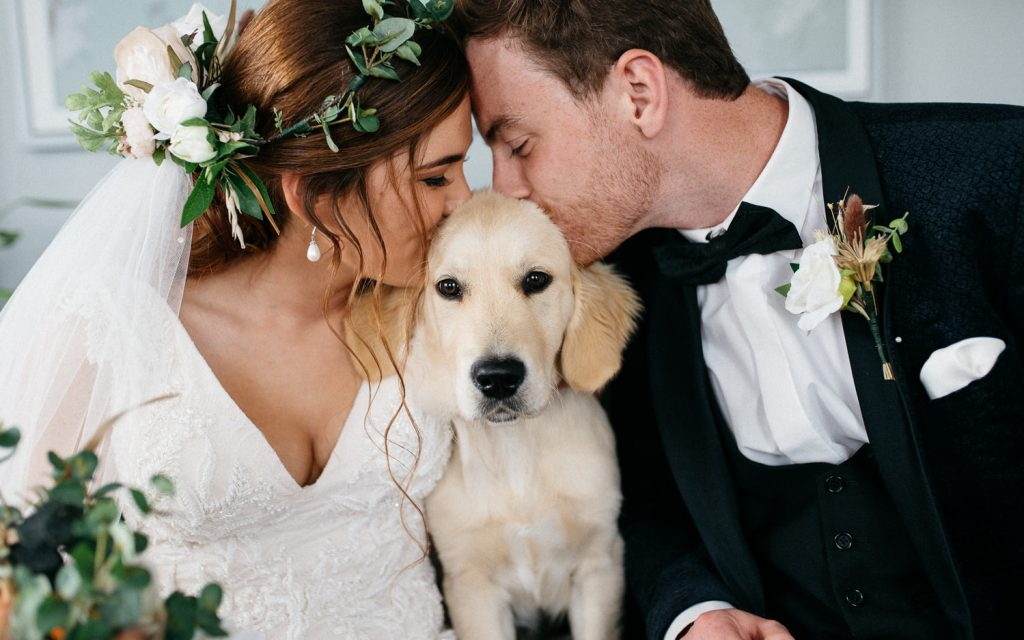 bride and groom posing with a dog wedding photographers Northern Ireland